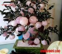 Cây đào đá thạch anh hồng 18 quả